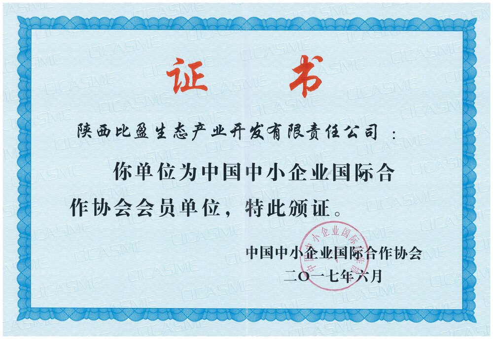 "title='<div align=""center""> <strong><span style=""font-family:Microsoft YaHei;font-size:14px;color:#434343;"">中国中小企业国际合作协会会员单位</span></strong>  </div>'"